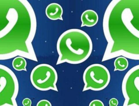 whatsapp errori